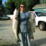 Don Brown Stripers