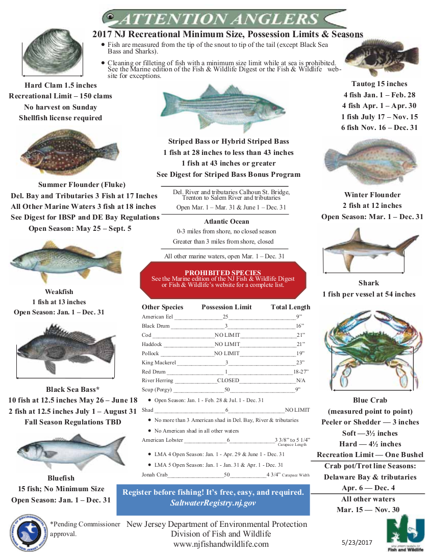 Budd 39 s bait and tackle for How much is a saltwater fishing license in florida